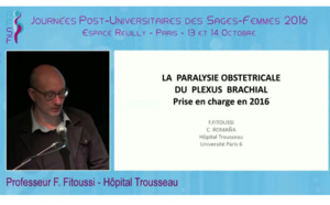 Plexus brachial - F Fitousi